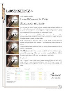 Il Cannone Violin Information Sheet