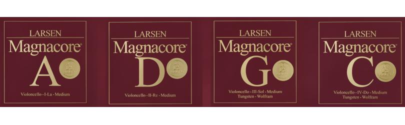 larsen result 2017