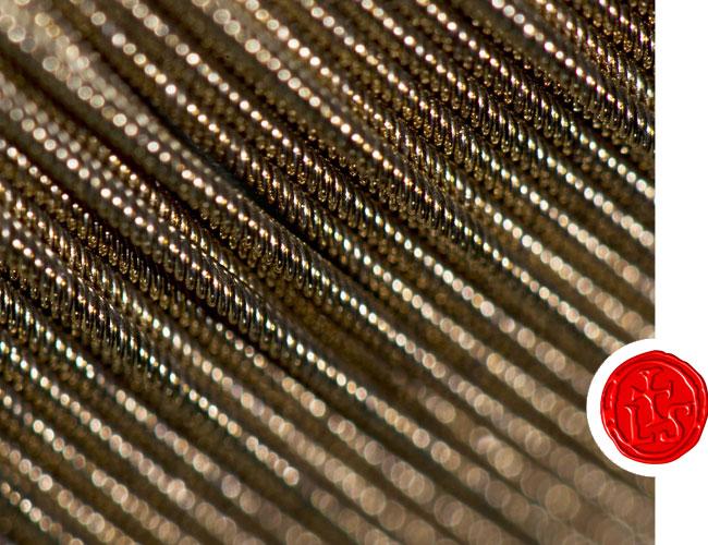 zoomed image of larsen strings