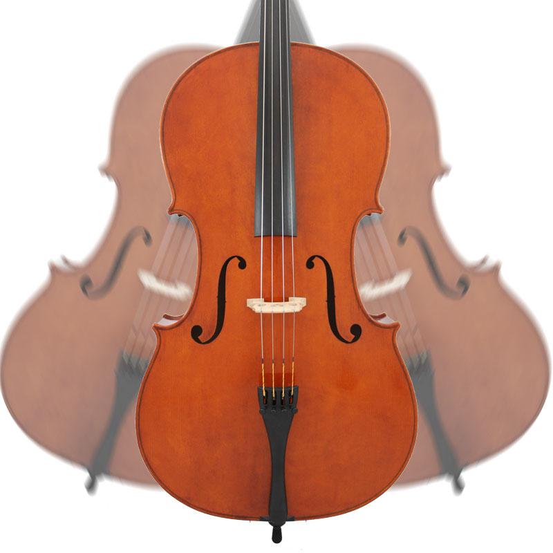 Cello in Motion