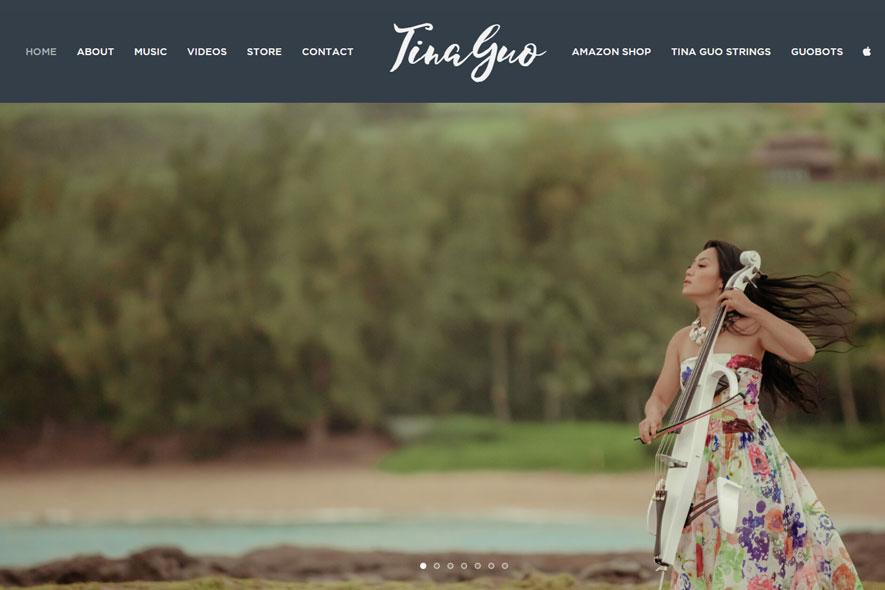 Tina Guo Website